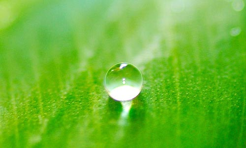 water-droplet